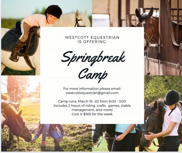 Spring Break Horseback Riding Camp